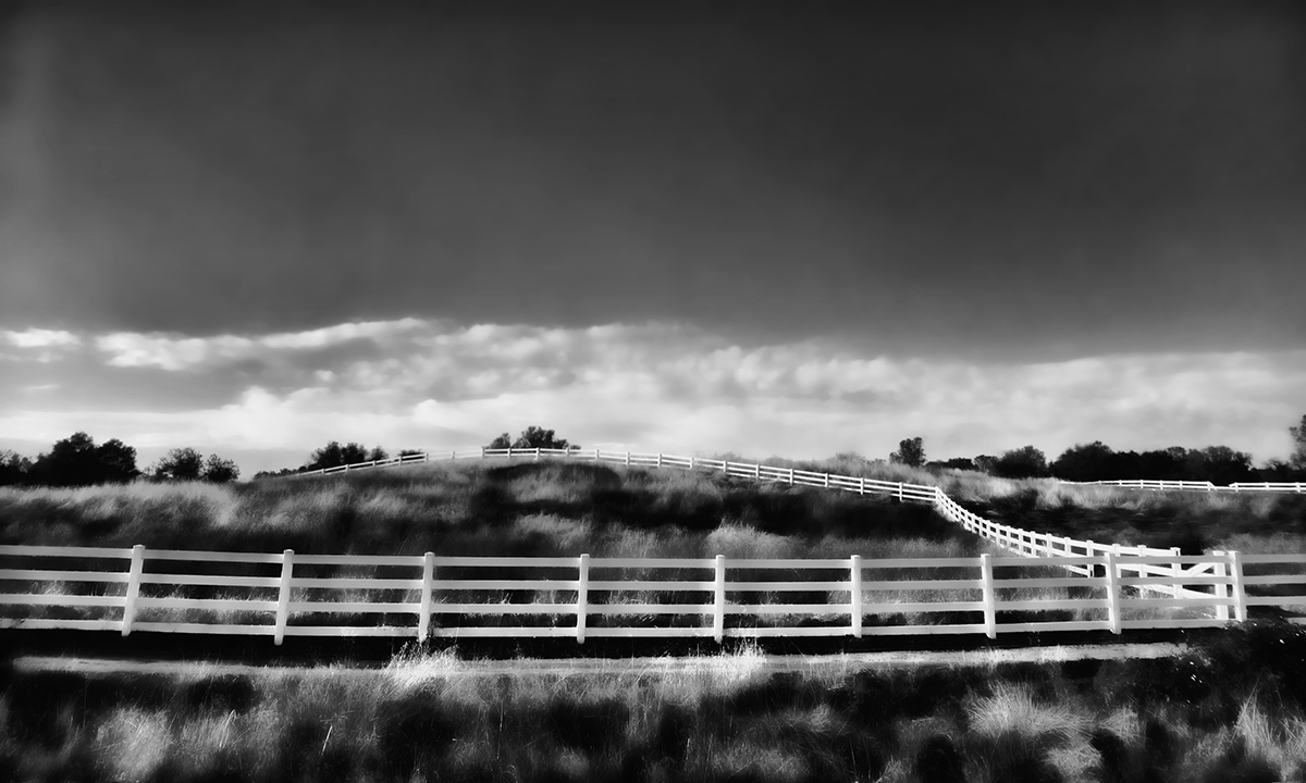 CN - Fences