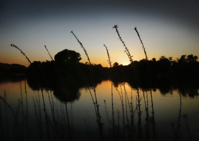 Hart Park Lake