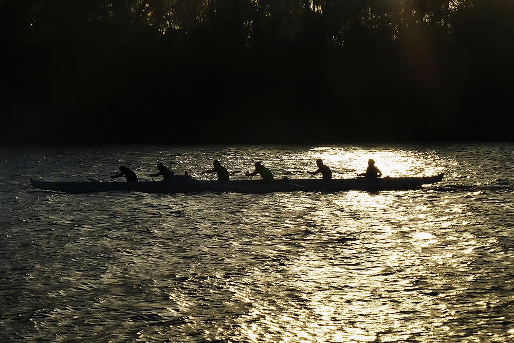 "Natoma Rowing - 24""x36"""