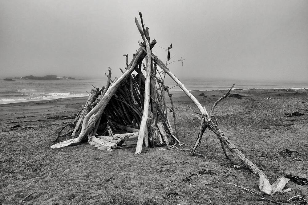 """Driftwood Shelter at Cambria - 20""""x30"""""""