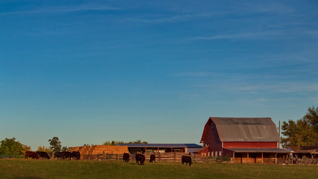 The Red Barn viewed from my back yard