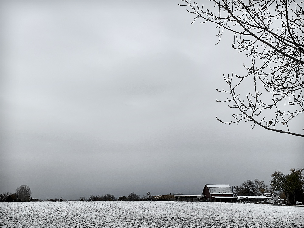 Early Snow - November 8, 2020